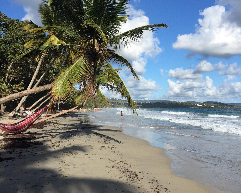 TOP 5 des choses à voir et à faire à Martinique