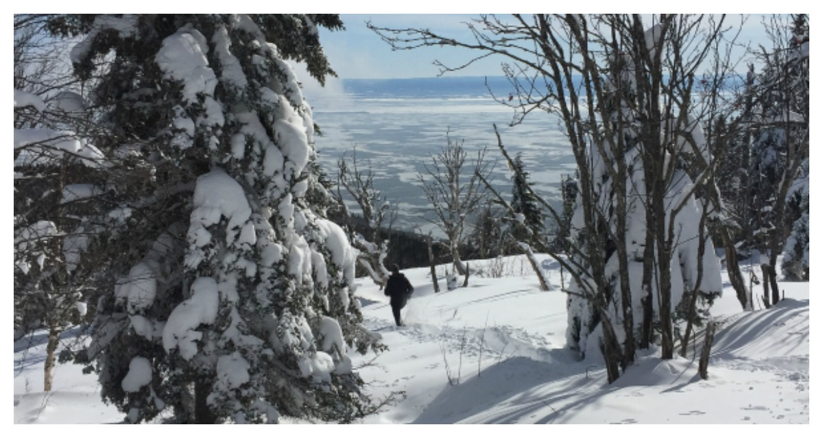 Idée d'activité hivernale